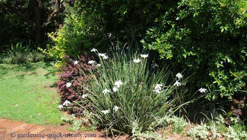 easy garden care