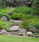 how to rock garden