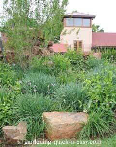 rock gardening tips