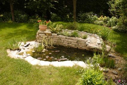 crystal water gardening