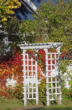 diy tips for gardening